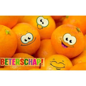beterschapskaart-blije-sinaasappels-1