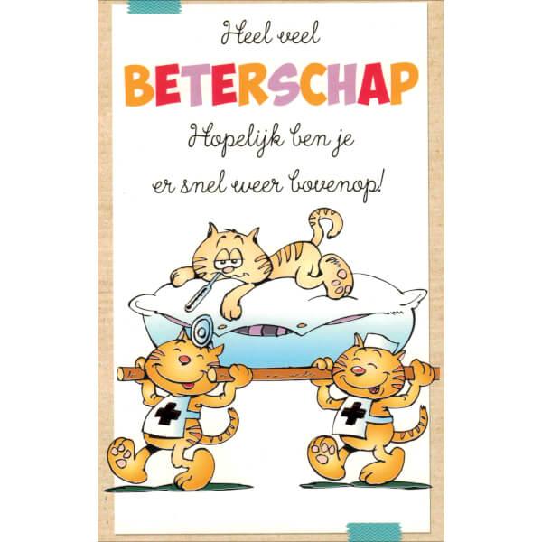 beterschapskaart-grappige-katten-1