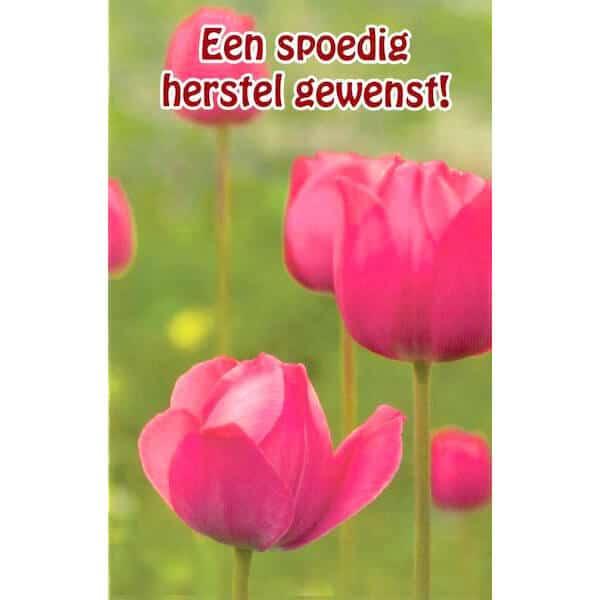 beterschapskaart-spoedig-herstel-gewenst-roze-tulpen-1
