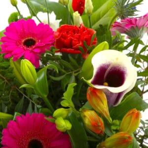beterschapsboeket-kleur-en-fleur-XL-4