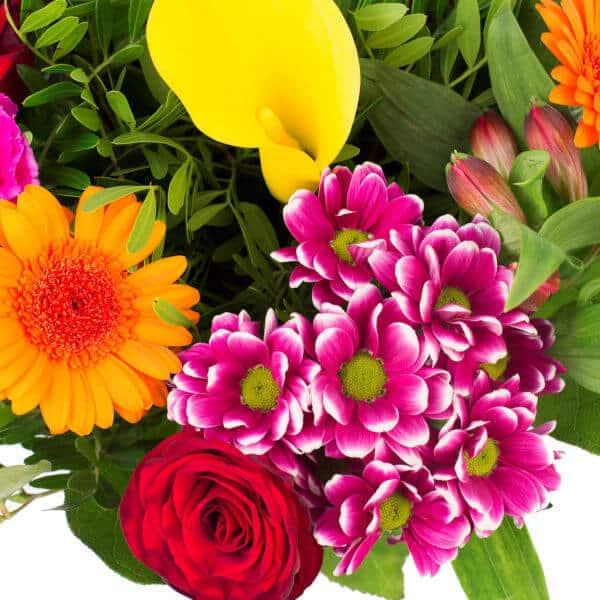 beterschapsboeket-kleur-en-fleur-groot-4