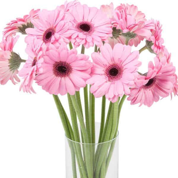 beterschapsboeket-roze-verrassing-3