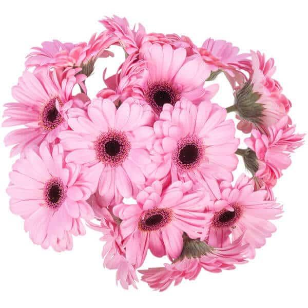 beterschapsboeket-roze-verrassing-4